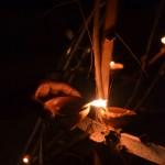 Fête de la lumière